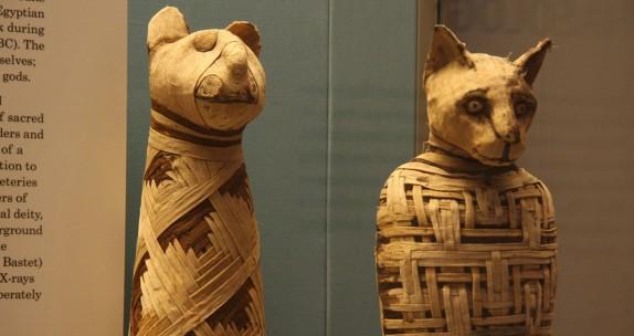 British Museum, mummies of animals (Egypt)